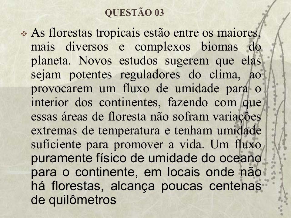 Verifica-se, porém, que as chuvas sobre florestas nativas não dependem da proximidade do oceano.