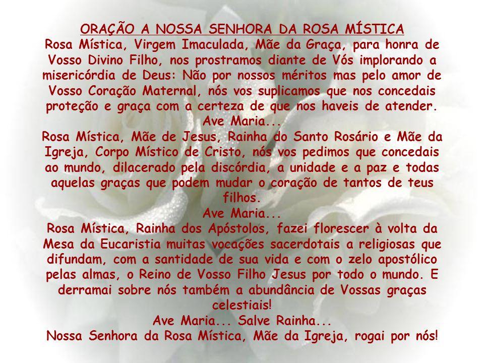 Agradeço a Nossa Senhora da Rosa Mística pelo milagre, à minha mãe e à minha família que estiveram ao meu lado durante todo o tempo, rezando comigo e