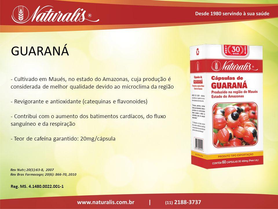 GUARANÁ - Cultivado em Maués, no estado do Amazonas, cuja produção é considerada de melhor qualidade devido ao microclima da região - Revigorante e an