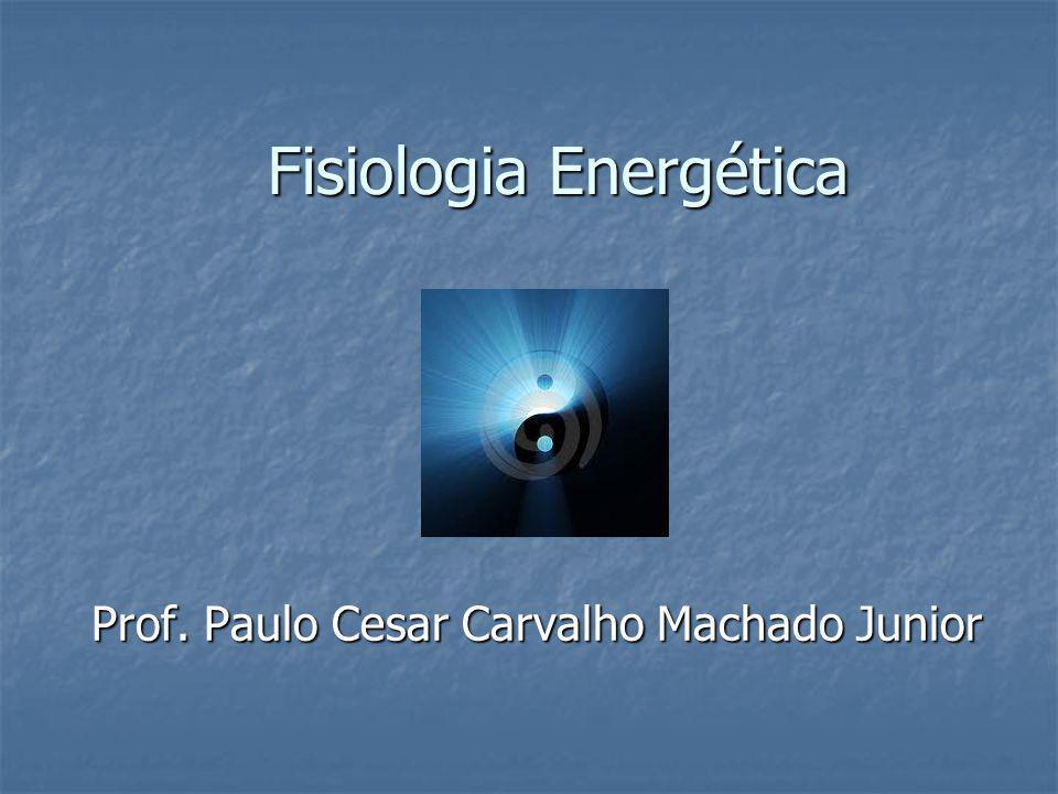 Fisiologia Energética Prof. Paulo Cesar Carvalho Machado Junior