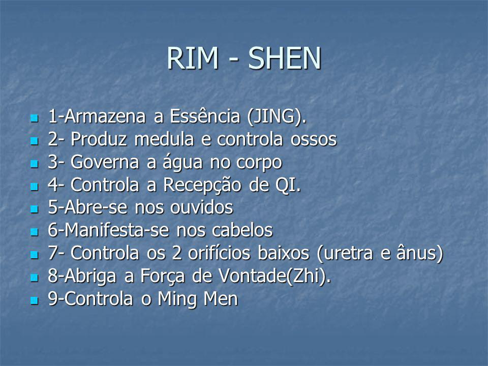 RIM - SHEN 1-Armazena a Essência (JING). 1-Armazena a Essência (JING). 2- Produz medula e controla ossos 2- Produz medula e controla ossos 3- Governa