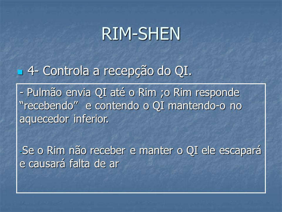 RIM-SHEN 4- Controla a recepção do QI. 4- Controla a recepção do QI. - Pulmão envia QI até o Rim ;o Rim responde recebendo e contendo o QI mantendo-o