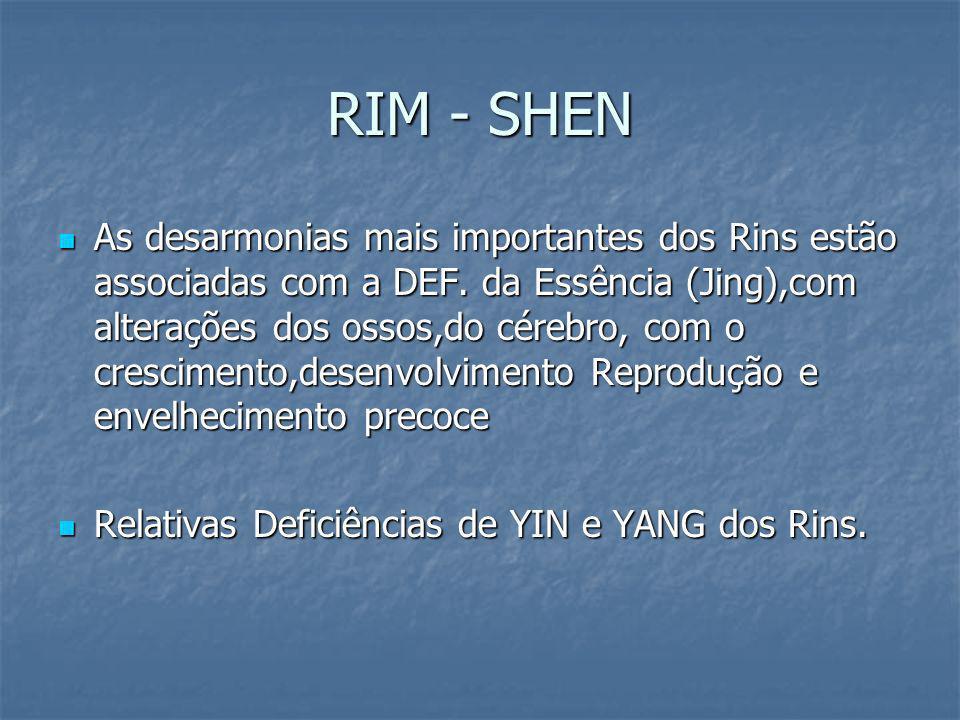 RIM - SHEN As desarmonias mais importantes dos Rins estão associadas com a DEF. da Essência (Jing),com alterações dos ossos,do cérebro, com o crescime