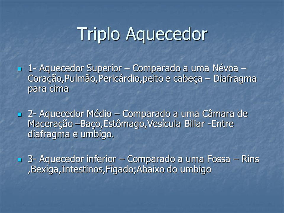 Triplo Aquecedor 1- Aquecedor Superior – Comparado a uma Névoa – Coração,Pulmão,Pericárdio,peito e cabeça – Diafragma para cima 1- Aquecedor Superior