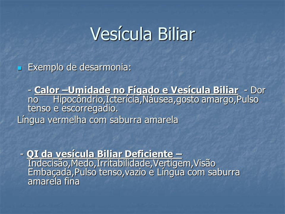 Vesícula Biliar Exemplo de desarmonia: Exemplo de desarmonia: - Calor –Umidade no Fígado e Vesícula Biliar - Dor no Hipocôndrio,Icterícia,Náusea,gosto