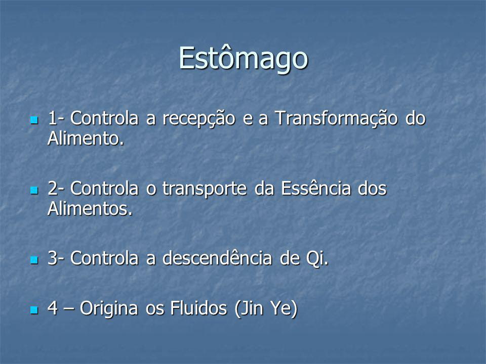 Estômago 1- Controla a recepção e a Transformação do Alimento. 1- Controla a recepção e a Transformação do Alimento. 2- Controla o transporte da Essên
