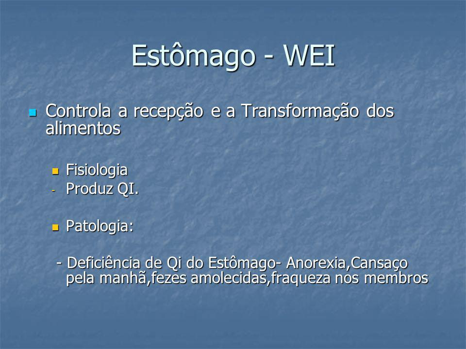 Estômago - WEI Controla a recepção e a Transformação dos alimentos Controla a recepção e a Transformação dos alimentos Fisiologia Fisiologia - Produz
