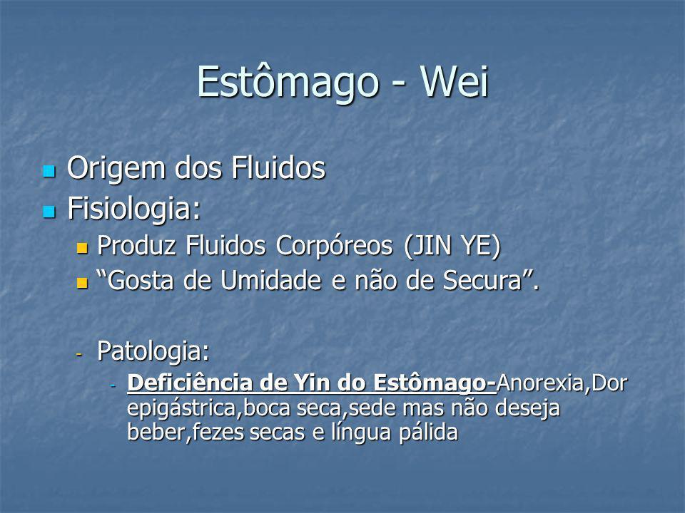 Estômago - Wei Origem dos Fluidos Origem dos Fluidos Fisiologia: Fisiologia: Produz Fluidos Corpóreos (JIN YE) Produz Fluidos Corpóreos (JIN YE) Gosta