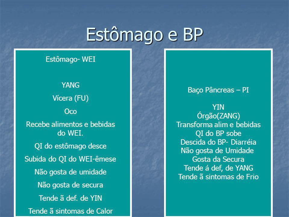 Estômago e BP Baço Pâncreas – PI YIN Órgão(ZANG) Transforma alim e bebidas QI do BP sobe Descida do BP- Diarréia Não gosta de Umidade Gosta da Secura