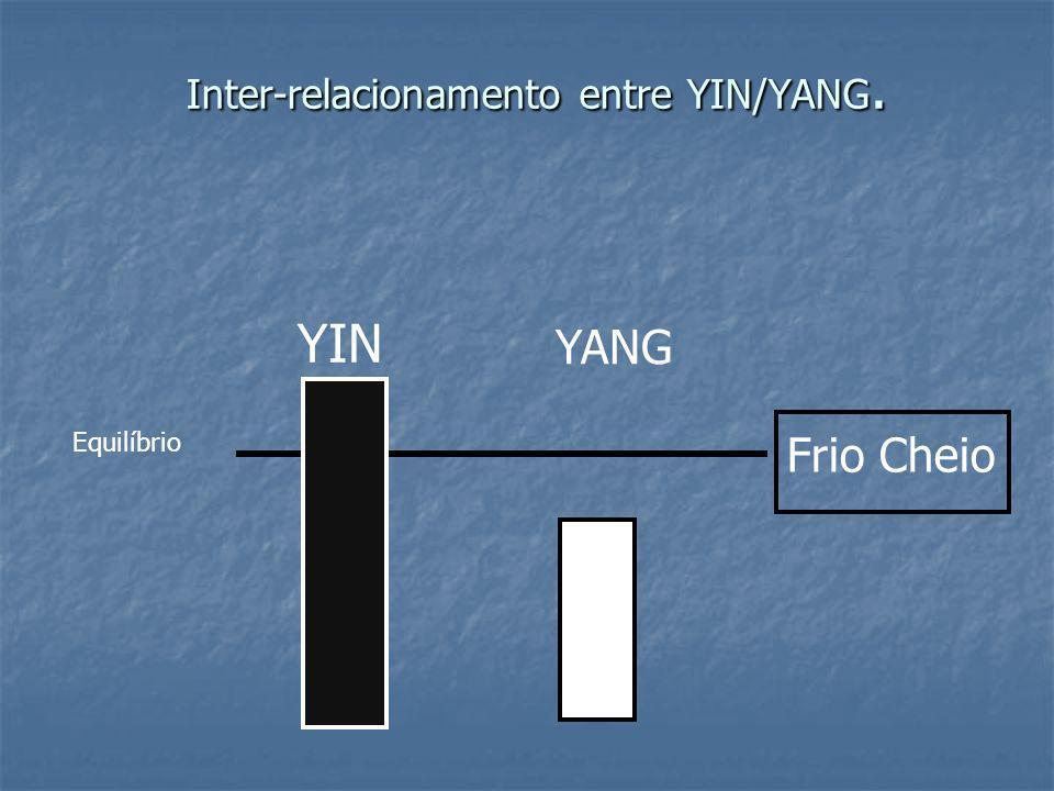 Inter-relacionamento entre YIN/YANG. YIN YANG Frio Cheio Equilíbrio