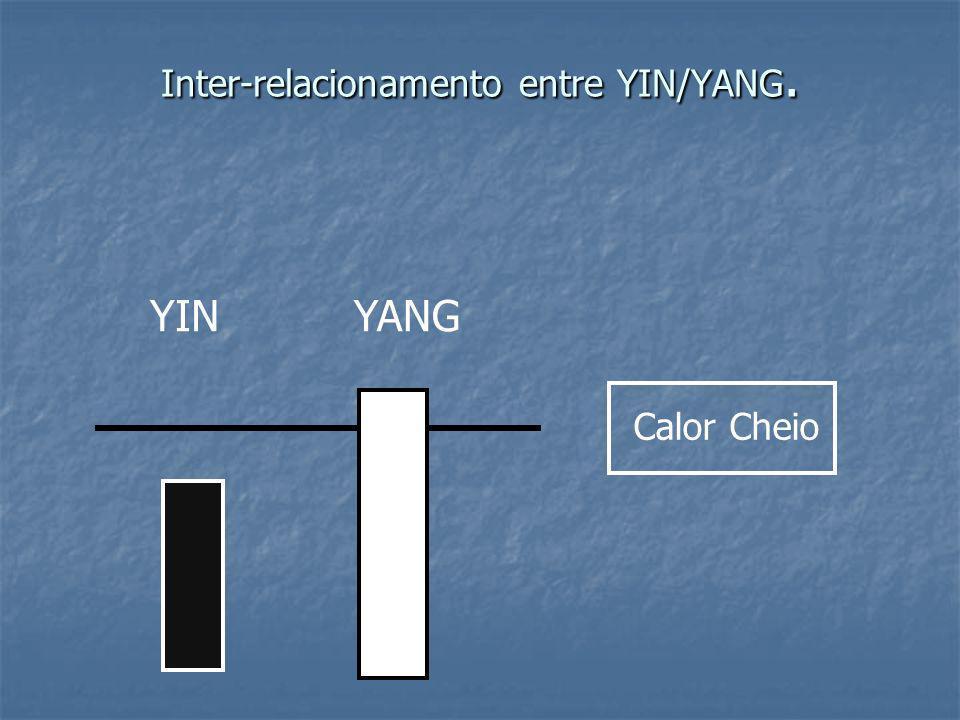 Inter-relacionamento entre YIN/YANG. YINYANG Calor Cheio