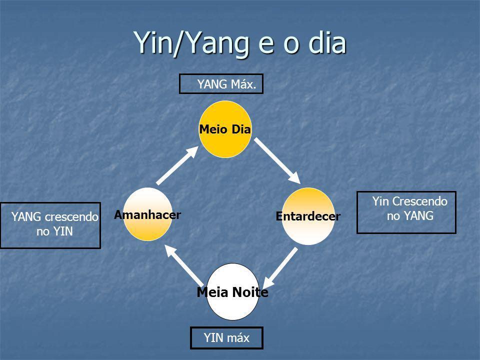 Yin/Yang e o dia Meio Dia Meia Noite Entardecer Amanhacer YANG Máx. YIN máx Yin Crescendo no YANG YANG crescendo no YIN