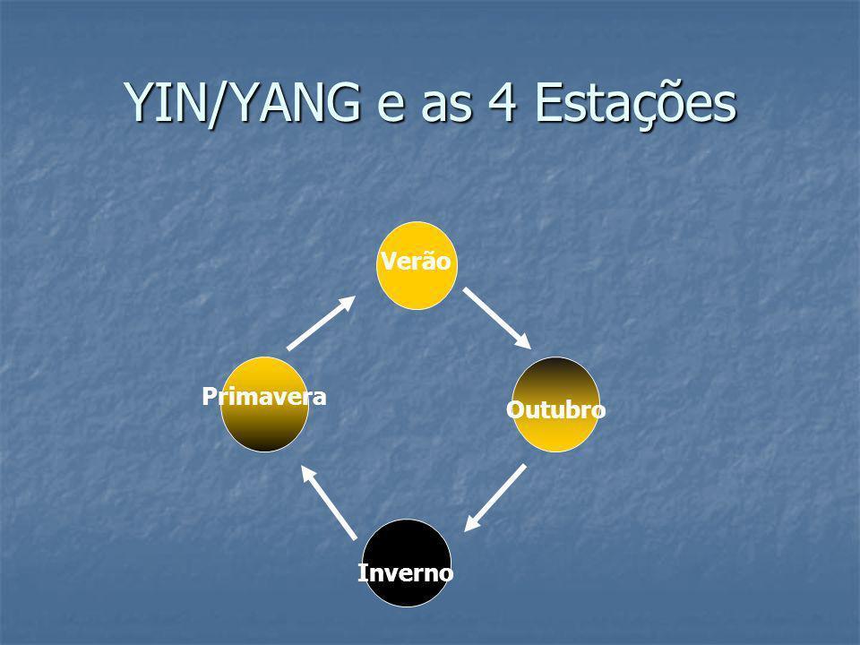 YIN/YANG e as 4 Estações Verão Inverno Outubro Primavera