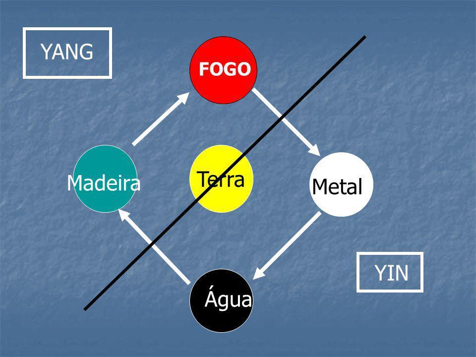 FOGO Terra Água Metal Madeira YANG YIN