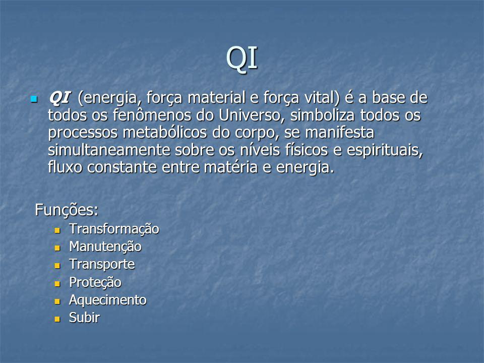 QI QI (energia, força material e força vital) é a base de todos os fenômenos do Universo, simboliza todos os processos metabólicos do corpo, se manife