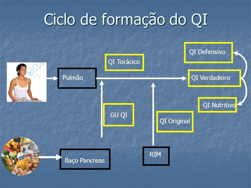 Ciclo de formação do QI Baço Pancreas GU QI Pulmão QI Torácico RIM QI Verdadeiro QI Defensivo QI Nutritivo QI Original