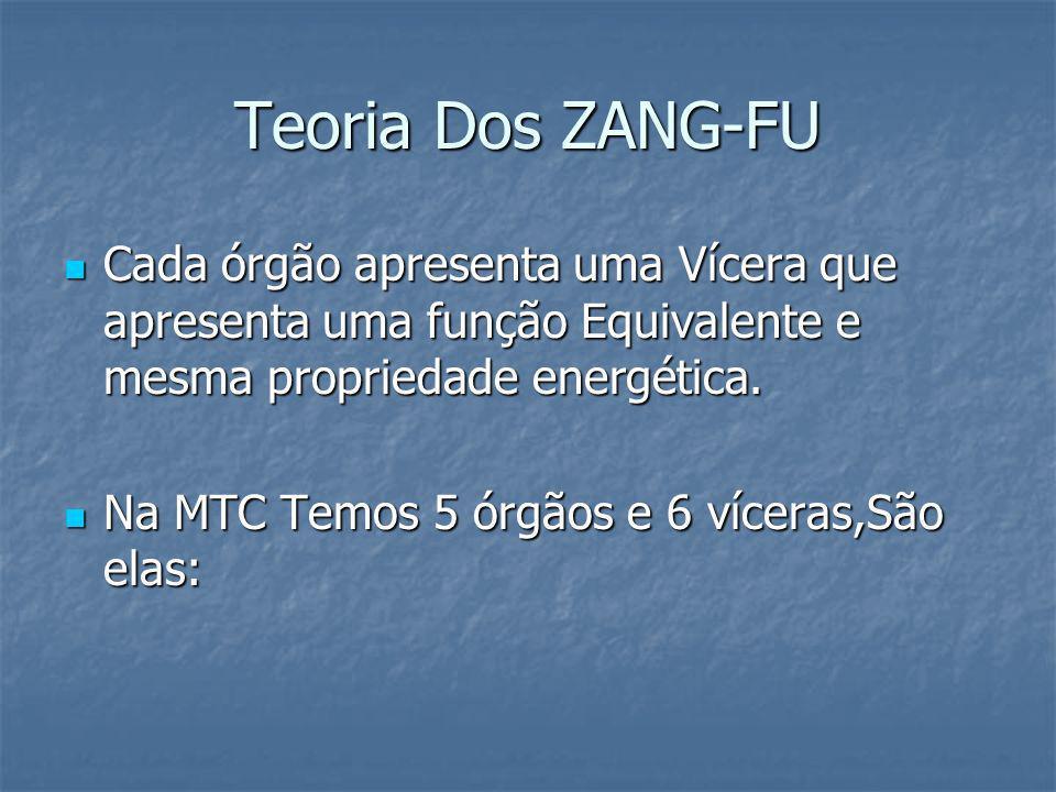 Teoria Dos ZANG-FU Cada órgão apresenta uma Vícera que apresenta uma função Equivalente e mesma propriedade energética. Cada órgão apresenta uma Vícer