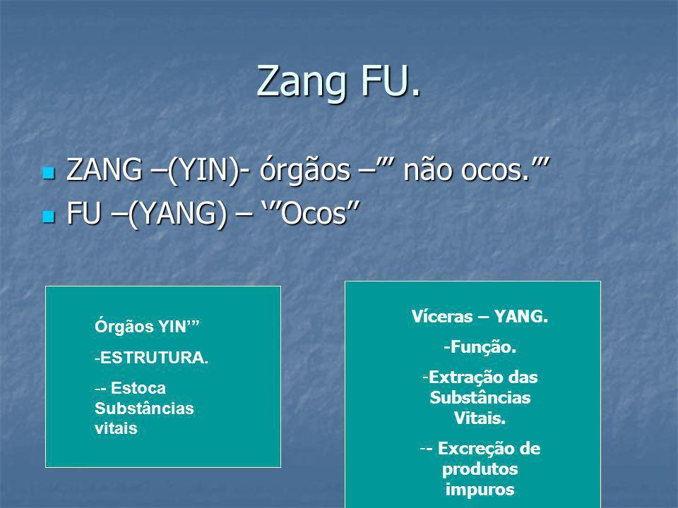Zang FU. ZANG –(YIN)- órgãos – não ocos. ZANG –(YIN)- órgãos – não ocos. FU –(YANG) – Ocos FU –(YANG) – Ocos Órgãos YIN -ESTRUTURA. -- Estoca Substânc
