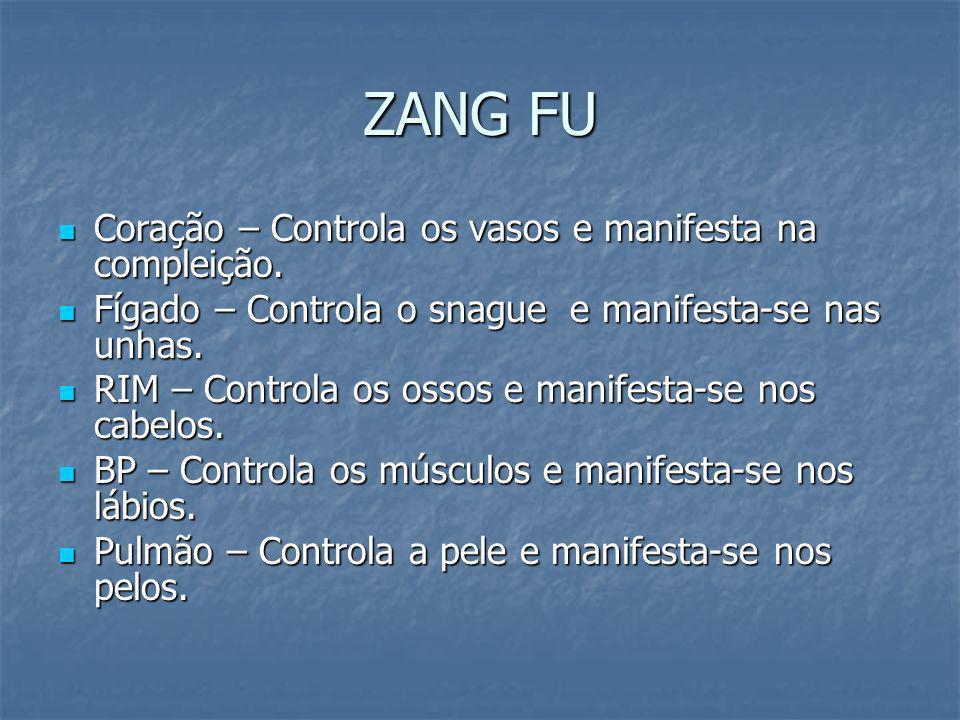 ZANG FU Coração – Controla os vasos e manifesta na compleição. Coração – Controla os vasos e manifesta na compleição. Fígado – Controla o snague e man