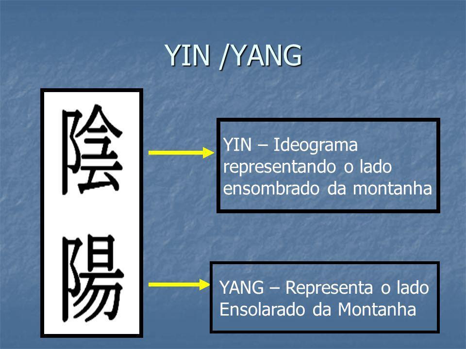 YIN /YANG YIN – Ideograma representando o lado ensombrado da montanha YANG – Representa o lado Ensolarado da Montanha