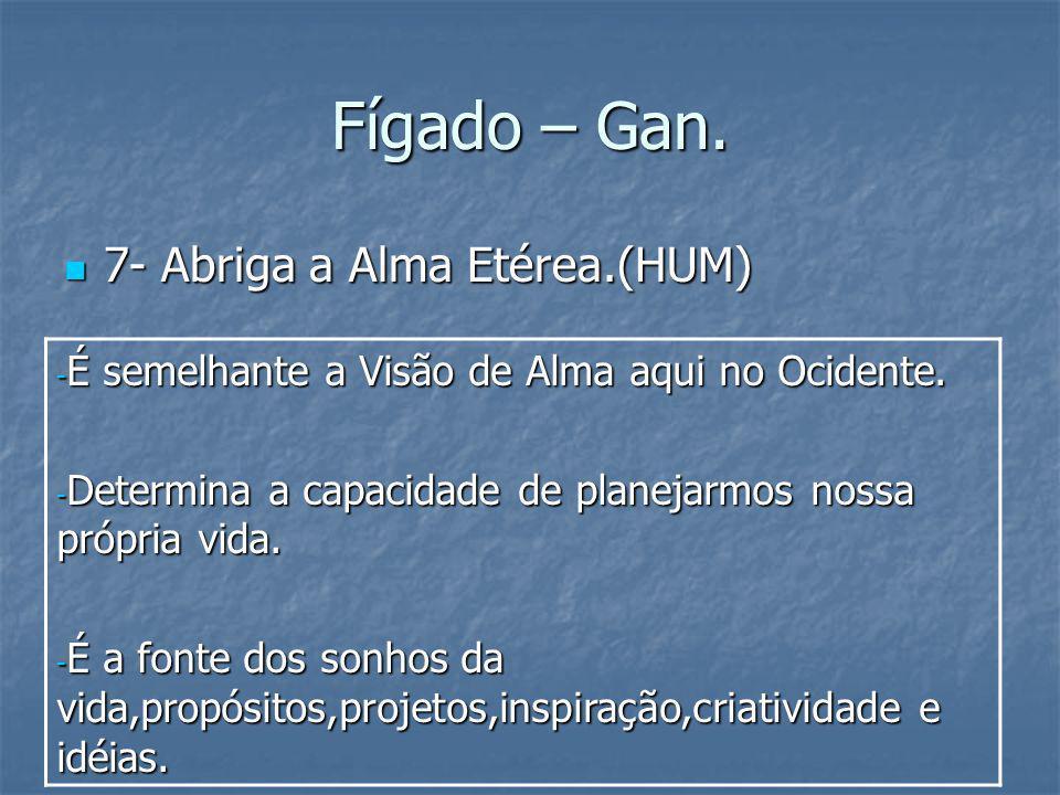 Fígado – Gan. 7- Abriga a Alma Etérea.(HUM) 7- Abriga a Alma Etérea.(HUM) - É semelhante a Visão de Alma aqui no Ocidente. - Determina a capacidade de
