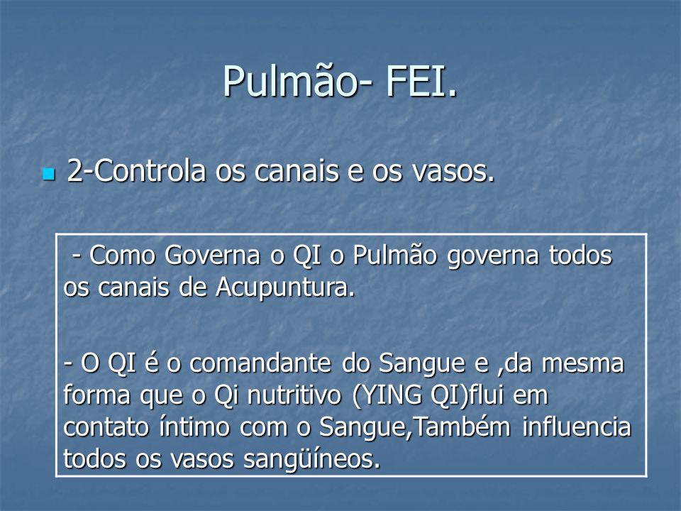 Pulmão- FEI. 2-Controla os canais e os vasos. 2-Controla os canais e os vasos. - Como Governa o QI o Pulmão governa todos os canais de Acupuntura. - C