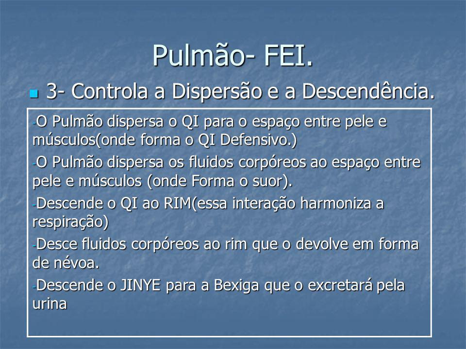 Pulmão- FEI. 3- Controla a Dispersão e a Descendência. 3- Controla a Dispersão e a Descendência. - O Pulmão dispersa o QI para o espaço entre pele e m