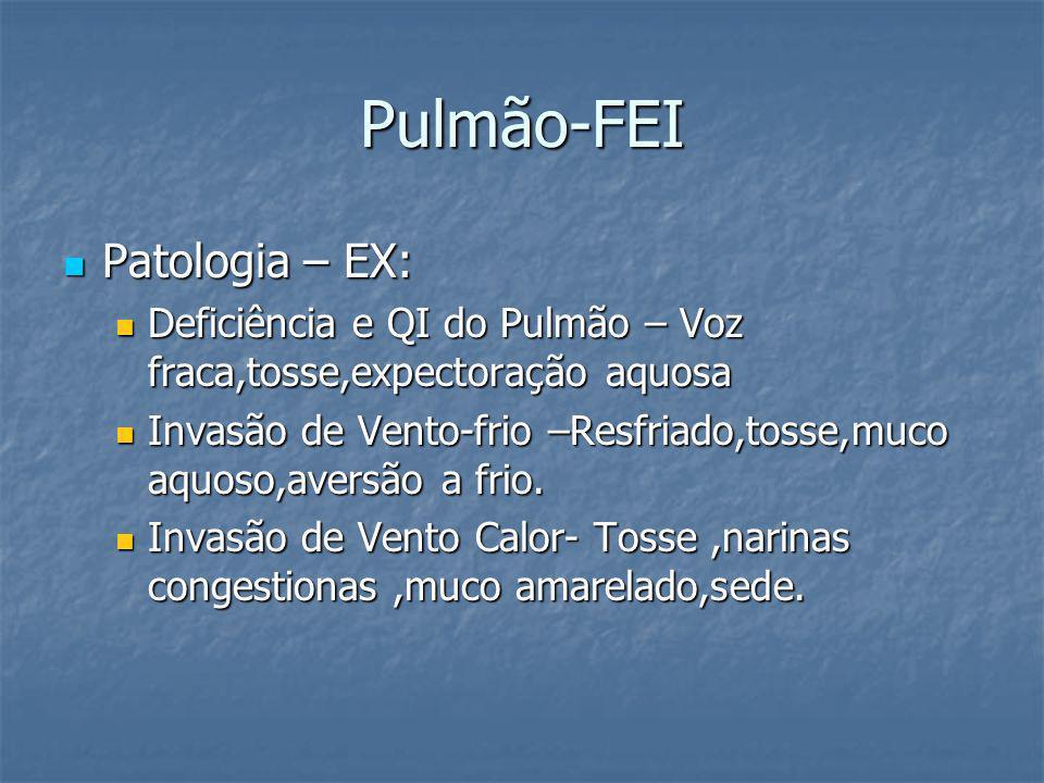 Pulmão-FEI Patologia – EX: Patologia – EX: Deficiência e QI do Pulmão – Voz fraca,tosse,expectoração aquosa Deficiência e QI do Pulmão – Voz fraca,tos