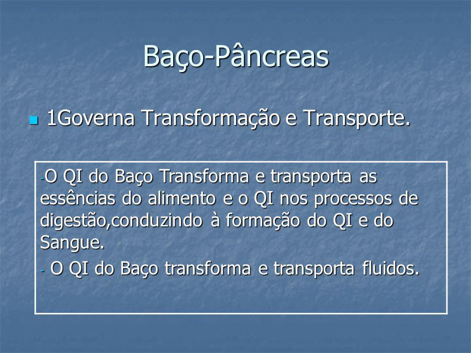 Baço-Pâncreas 1Governa Transformação e Transporte. 1Governa Transformação e Transporte. - O QI do Baço Transforma e transporta as essências do aliment