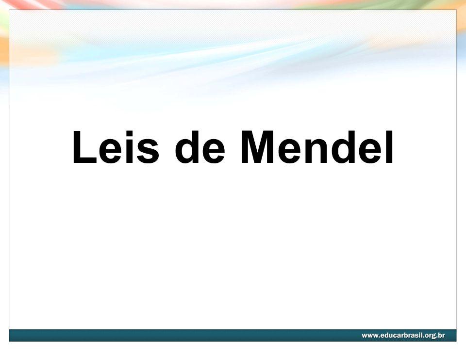2ª Lei de Mendel É a Lei da Segregação Independente, em que os fatores para duas ou mais características segregam- se no híbrido, distribuindo-se independentemente para os gametas, onde combinam ao acaso.
