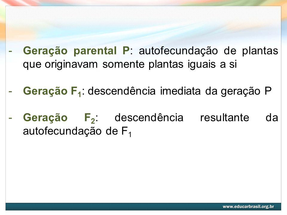 -Geração parental P: autofecundação de plantas que originavam somente plantas iguais a si -Geração F 1 : descendência imediata da geração P -Geração F