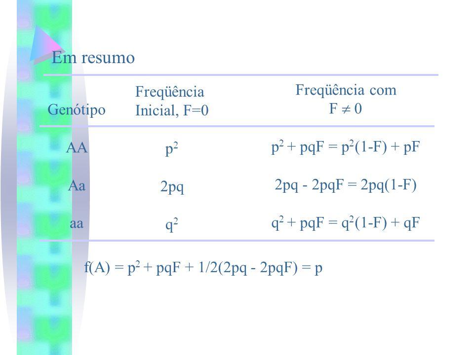 Genótipo AA Aa aa Freqüência Inicial, F=0 p 2 2pq q 2 Freqüência com F 0 p 2 + pqF = p 2 (1-F) + pF 2pq - 2pqF = 2pq(1-F) q 2 + pqF = q 2 (1-F) + qF E