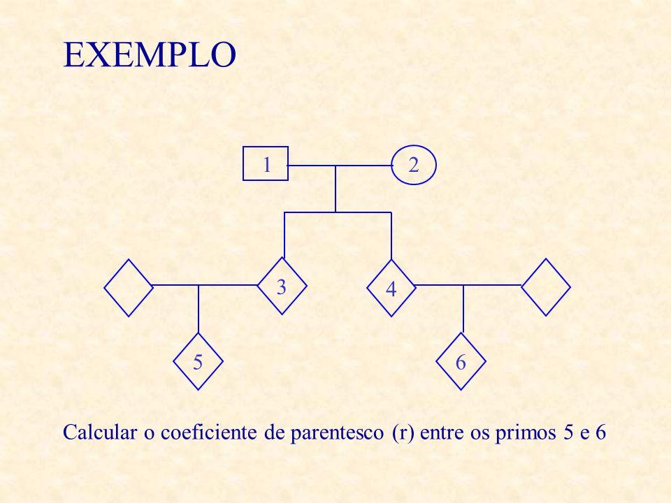 EXEMPLO 12 4 65 3 Calcular o coeficiente de parentesco (r) entre os primos 5 e 6