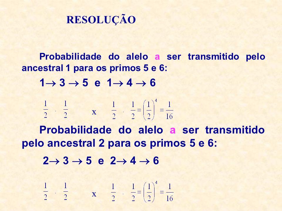 RESOLUÇÃO Probabilidade do alelo a ser transmitido pelo ancestral 1 para os primos 5 e 6: 1 3 5 e 1 4 6 Probabilidade do alelo a ser transmitido pelo