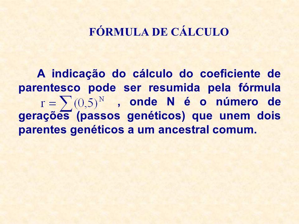 FÓRMULA DE CÁLCULO A indicação do cálculo do coeficiente de parentesco pode ser resumida pela fórmula, onde N é o número de gerações (passos genéticos