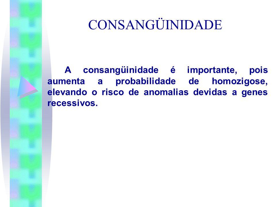 CONSANGÜINIDADE A consangüinidade é importante, pois aumenta a probabilidade de homozigose, elevando o risco de anomalias devidas a genes recessivos.
