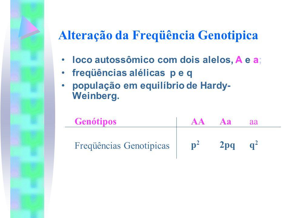 Alteração da Freqüência Genotipica loco autossômico com dois alelos, A e a; freqüências alélicas p e q população em equilíbrio de Hardy- Weinberg. Gen
