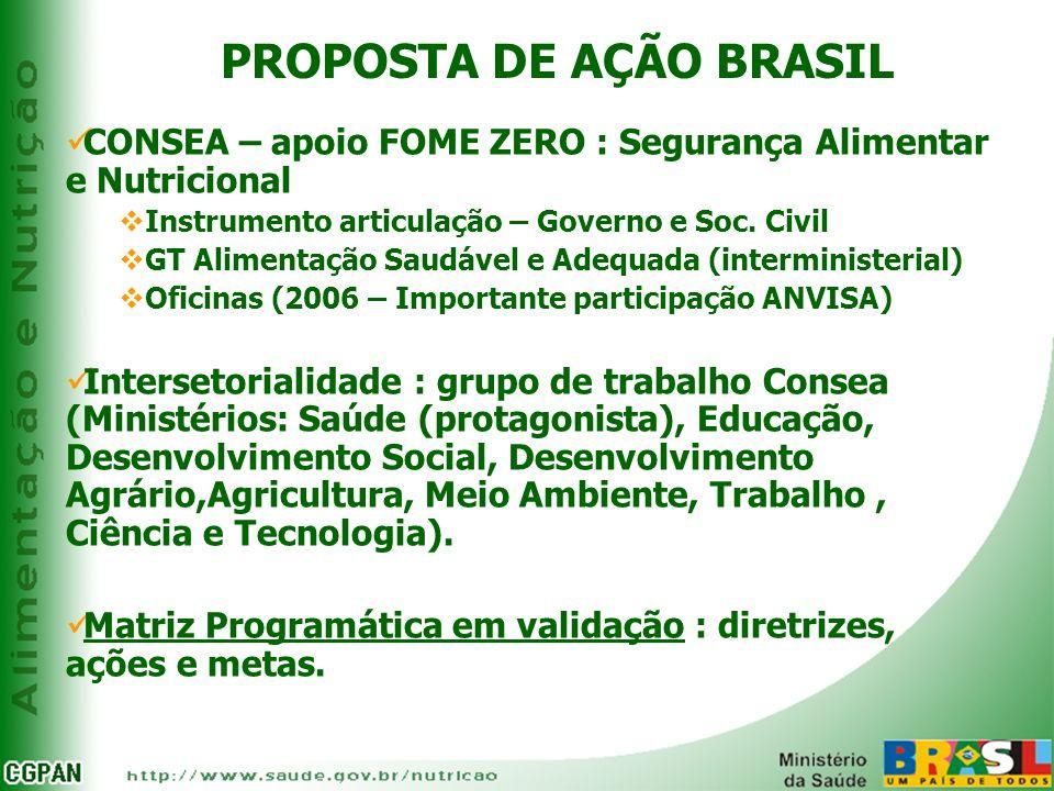PROPOSTA DE AÇÃO BRASIL CONSEA – apoio FOME ZERO : Segurança Alimentar e Nutricional Instrumento articulação – Governo e Soc. Civil GT Alimentação Sau