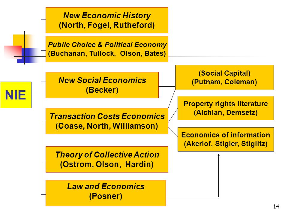 14 NIE New Economic History (North, Fogel, Rutheford) Public Choice & Political Economy (Buchanan, Tullock, Olson, Bates) New Social Economics (Becker