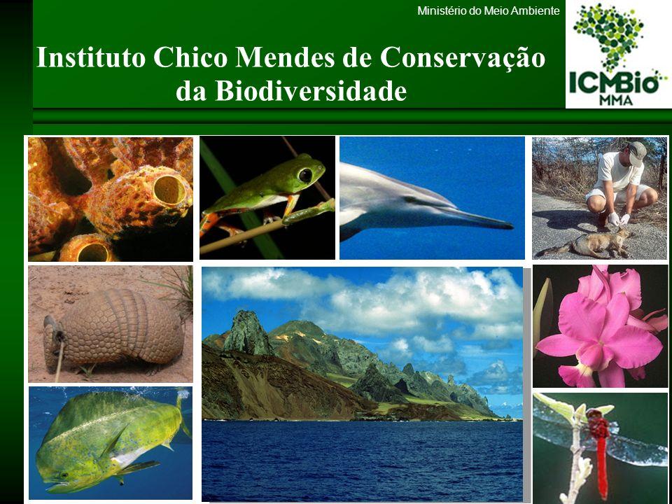 Ministério do Meio Ambiente Criação Lei nº 11.516, de 28 de agosto de 2007 Art.