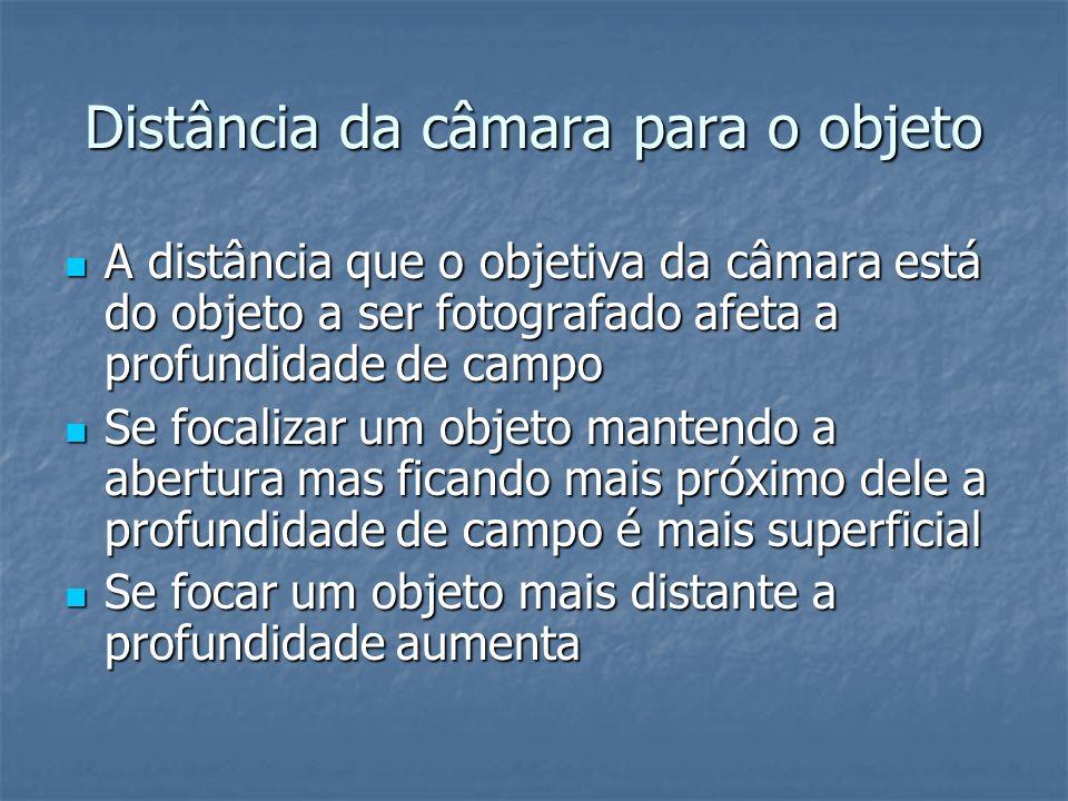 Distância da câmara para o objeto A distância que o objetiva da câmara está do objeto a ser fotografado afeta a profundidade de campo A distância que