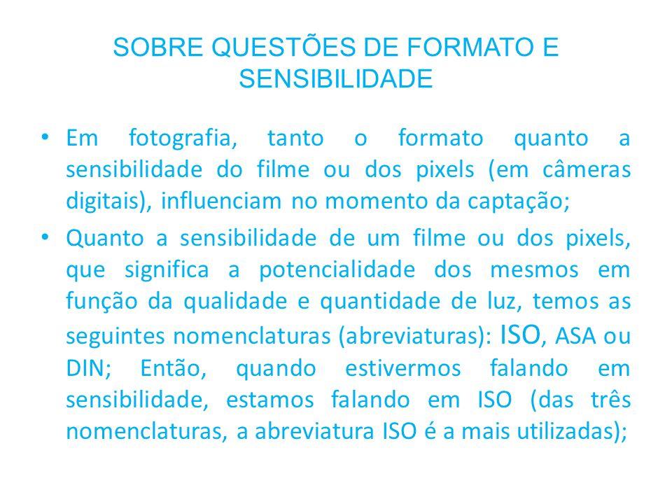 SOBRE QUESTÕES DE FORMATO E SENSIBILIDADE Em fotografia, tanto o formato quanto a sensibilidade do filme ou dos pixels (em câmeras digitais), influenc
