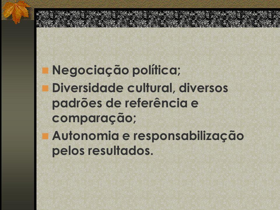 Negociação política; Diversidade cultural, diversos padrões de referência e comparação; Autonomia e responsabilização pelos resultados.