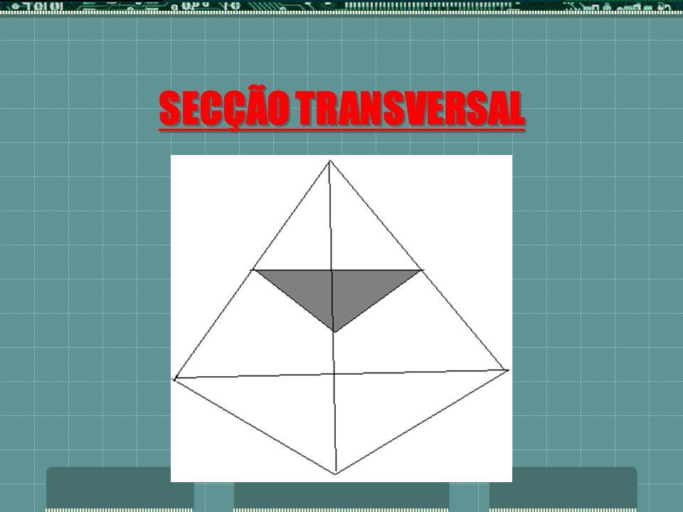 SECÇÃO TRANSVERSAL