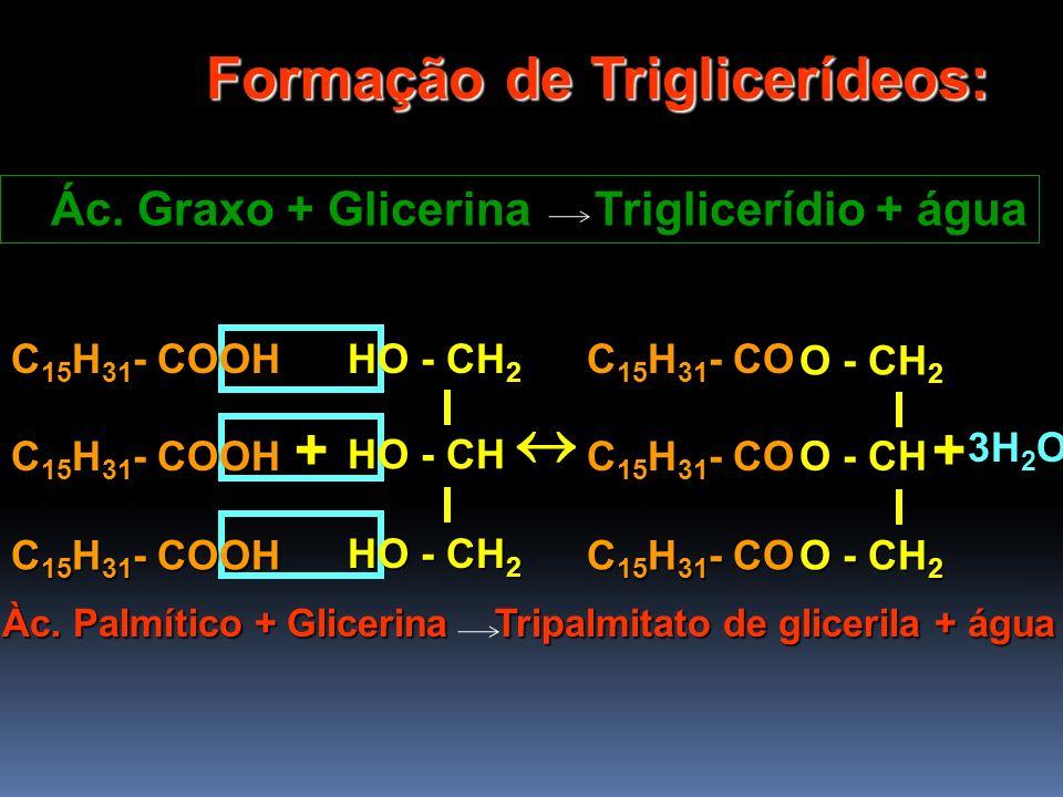 + Formação de Triglicerídeos: Ác. Graxo + Glicerina Triglicerídio + água C 15 H 31 - COOH HO - CH 2 HO - CH HO - CH 2 C 15 H 31 - COOH C 15 H 31 - CO