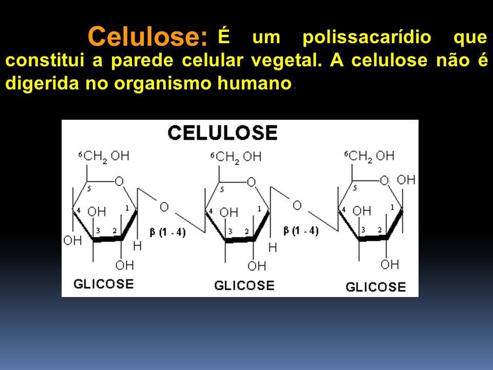 Celulose: É um polissacarídio que constitui a parede celular vegetal. A celulose não é digerida no organismo humano.