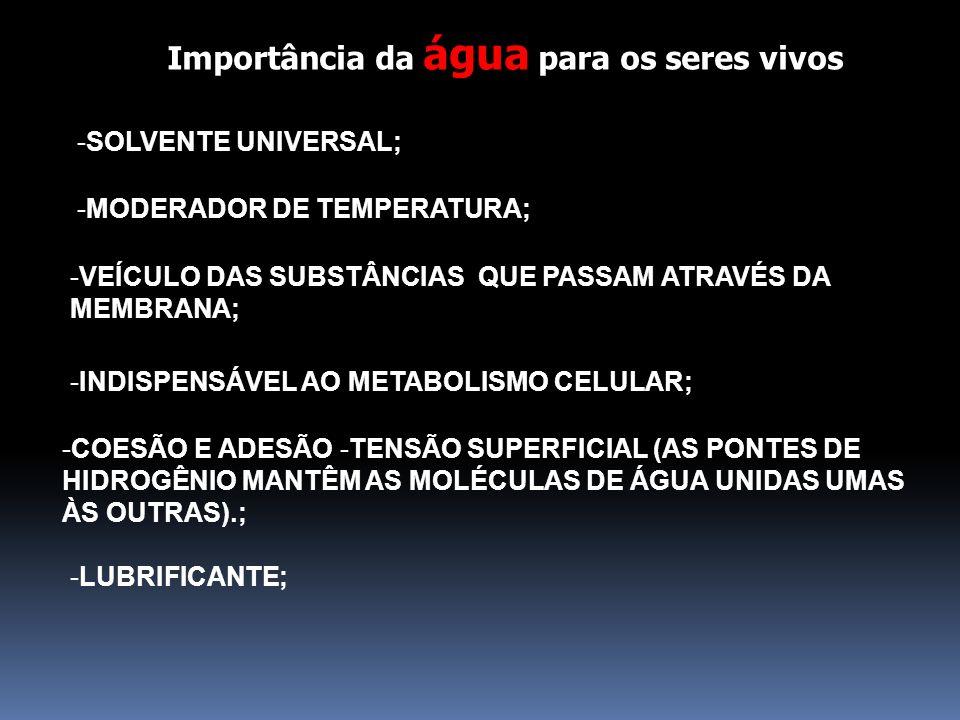 Importância da água para os seres vivos -SOLVENTE UNIVERSAL; -MODERADOR DE TEMPERATURA; -VEÍCULO DAS SUBSTÂNCIAS QUE PASSAM ATRAVÉS DA MEMBRANA; -INDI