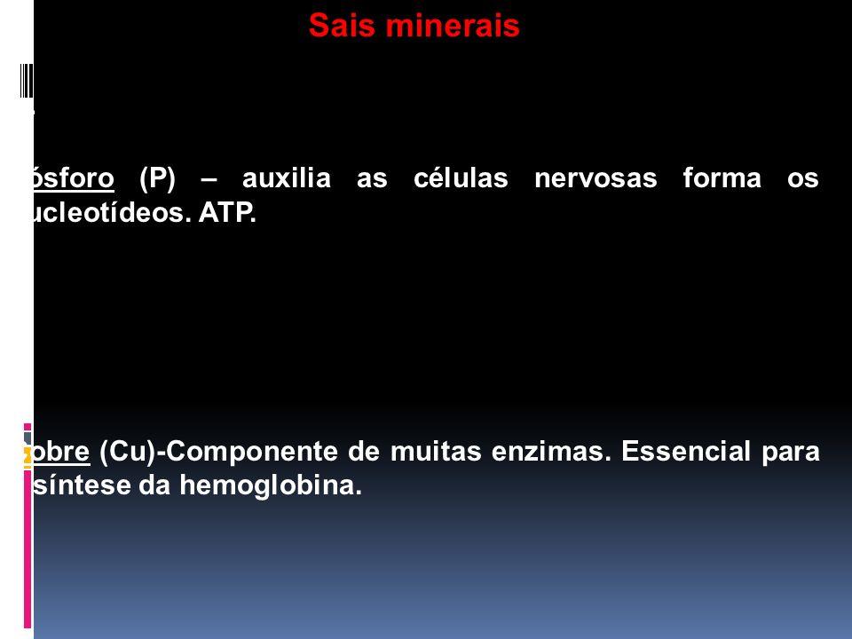 h- Fósforo (P) – auxilia as células nervosas forma os nucleotídeos. ATP. i- Cobre (Cu)-Componente de muitas enzimas. Essencial para a síntese da hemog