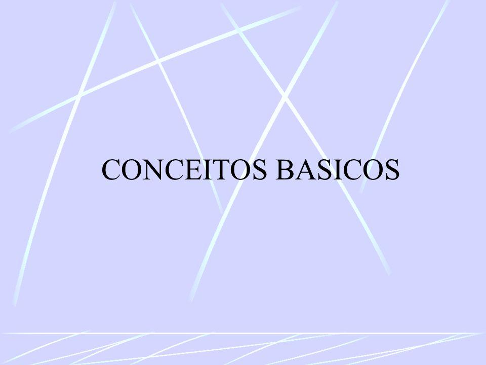 CONCEITOS BASICOS