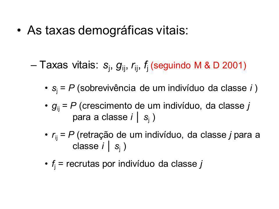 As taxas demográficas vitais: –Taxas vitais: s j, g ij, r ij, f j (seguindo M & D 2001) s j = P (sobrevivência de um indivíduo da classe i ) g ij = P